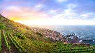 Madeira Rhomberg Reisen